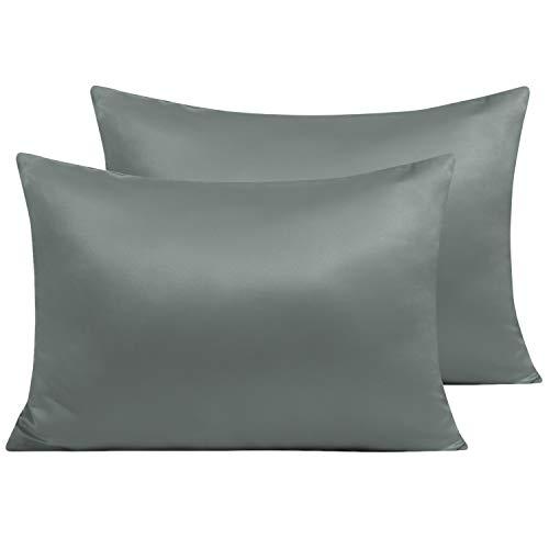 NTBAY 100% Seide Kissenbezug für Haare und Haut, 2er Pack Kissenbezüge mit Reißverschluss, 40x60cm, Dunkelgrau