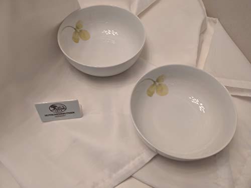 Hutschenreuther Set mit 2 Stück Müslischalen 15 cm Easy Lemon Grass