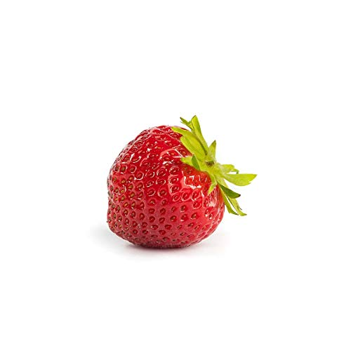 20 Mara de Bois Erdbeerpflanzen (Walderdbeere) - Frigo Pflanzen - Immertragend - Pflanzzeit: März/April - Ernte: Juli bis Oktober - Erdbeeren von Erdbeerprofi.de