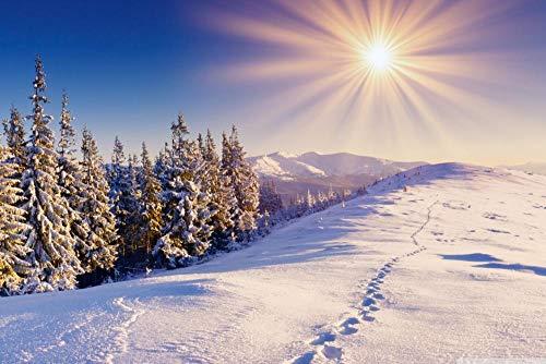 Wmbz Puzzle 1000 Fußspuren im Schnee 50x70cm