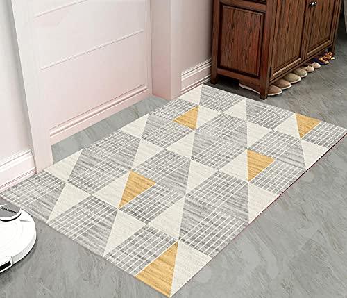 Fußmatte Außen,60X90CM Waschbar rutschfest Schmutzfangmatte,Türmatte Langlebig und Pflegeleicht Teppich Außenbereich für Eingang Flur Küche Wohnzimmer Abstrakte Mode