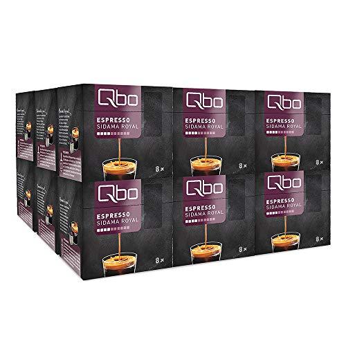 Qbo Kapseln - Espresso Sidama Royal (Kaffee, aromatisch, Anklänge von Zitrus) (144 Stück)