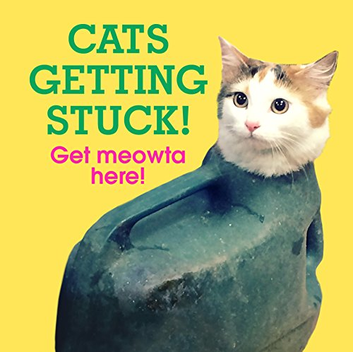 Cats Getting Stuck! (Gift)