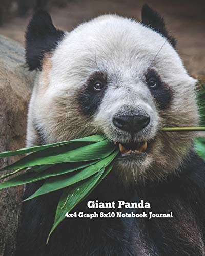 Giant Panda 4x4 Graph 8x10 Notebook Journal