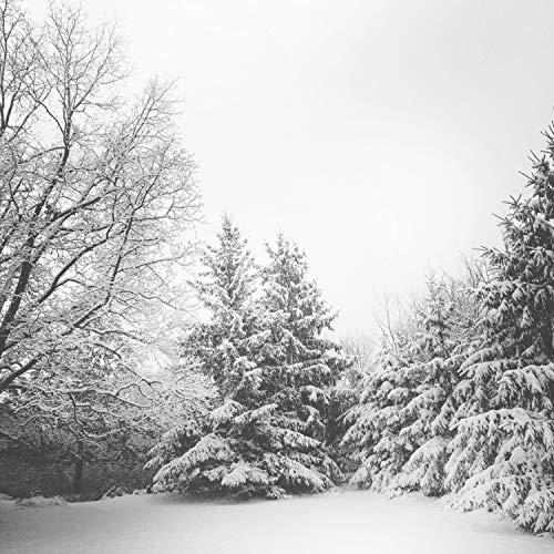 Our Special Christmas: 36 Essential Season Classics for Your Family to Enjoy
