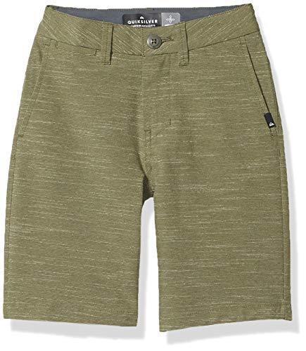 Quiksilver Jungen Union SLUB Amphibian Youth 18 Walk Legere Shorts, Four Leaf Clover, 23/10S US
